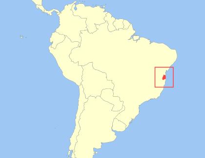 mapa lion