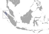 Sumatran_Orangutan_area