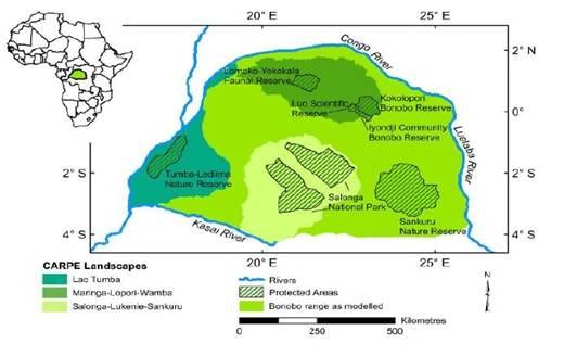 Foto 2: Área de distribución del bonobo en la República Democrática del Congo
