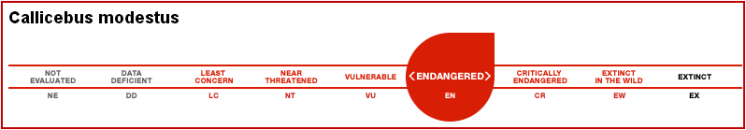 estatus de especie IUCN