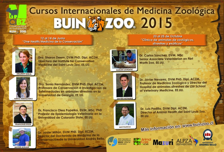 Poster Cursos Buin Zoo Medicina Zoologica 2015