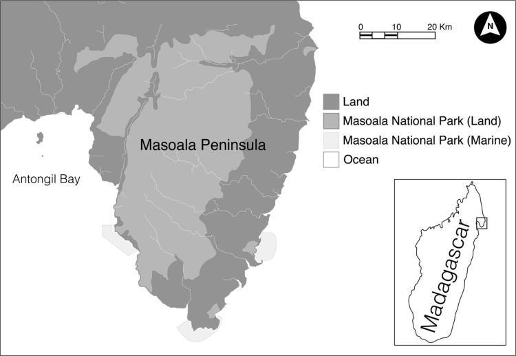 3_mansoala