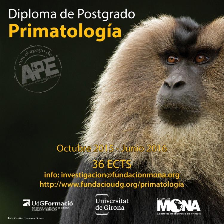 dp primatologia