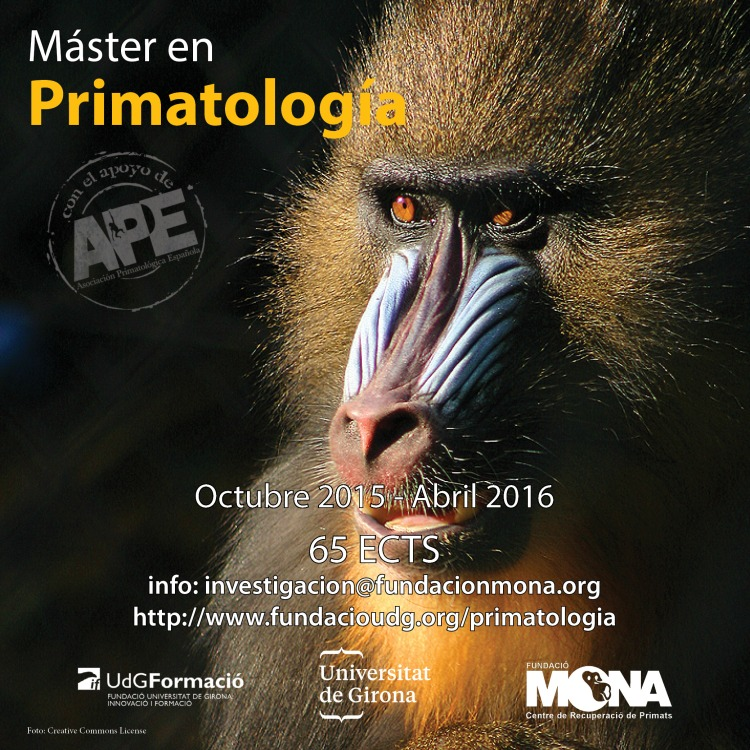 master primatologia1