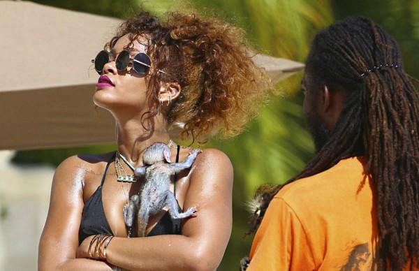 Figura2. La cantante Rihanna sosteniendo una cría de macaco, probablemente separada de su madre al nacer para la venta a través del tráfico ilegal.