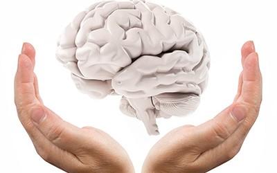 The-Hand-As-A-Brain-s-400x250