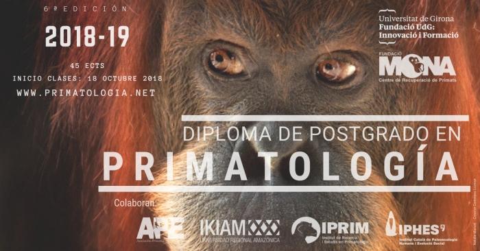 diploma_postgrado.jpg